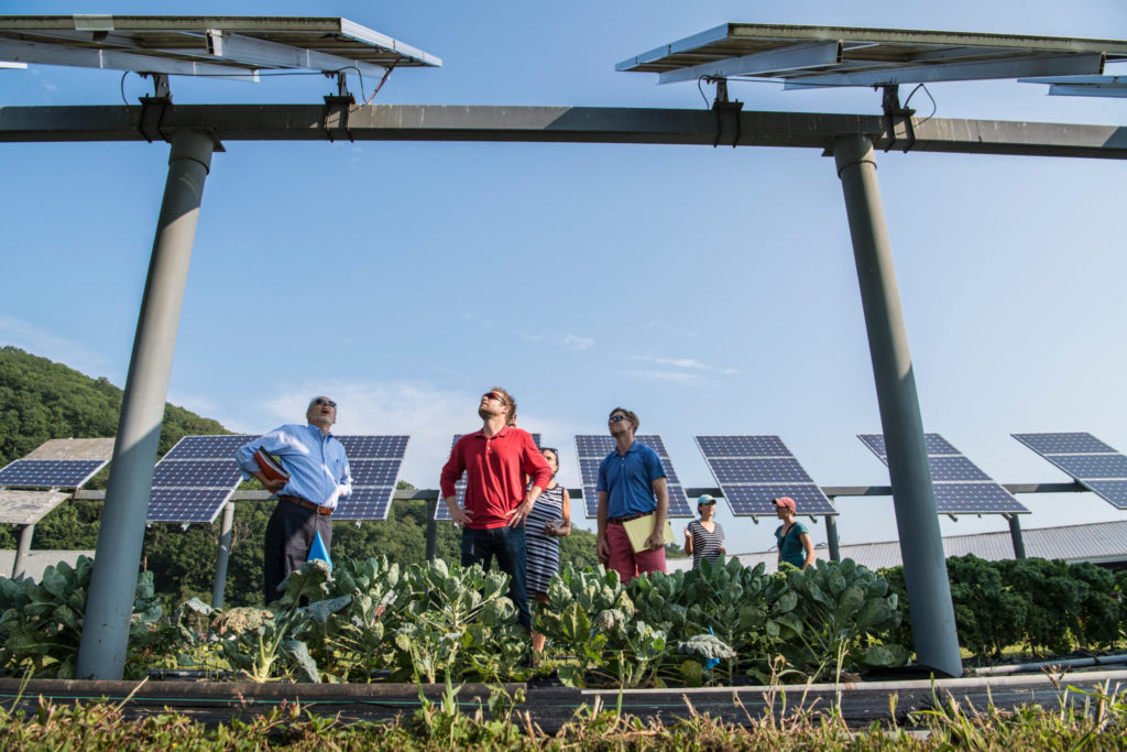 Sustainable Energy Community greystones delgany